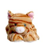 caramel the cat
