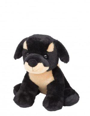 rottie dog